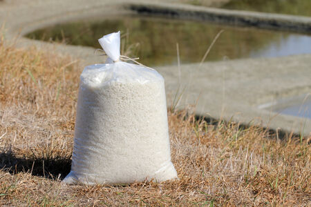 vendee: Bag of salt in the marshes