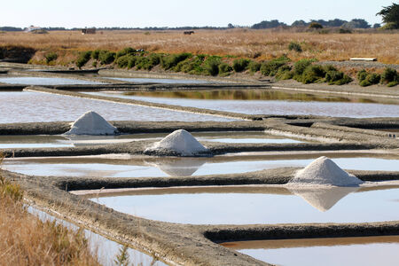 vendee: Salt marshes of Noirmoutier Stock Photo