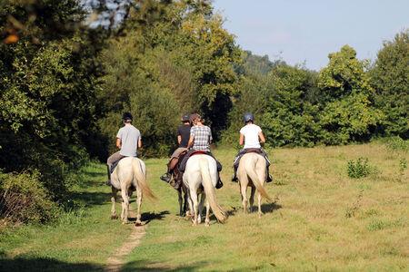 parapente: Paseos a caballo