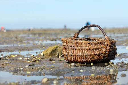 vendee: Wicker basket on Le Gois Stock Photo