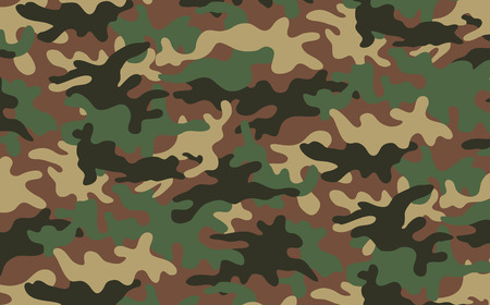 to conceal: Camouflage texture 2