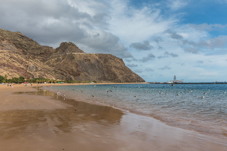 canary: Las Teresitas beach in Tenerife (Canary Islands, Spain)