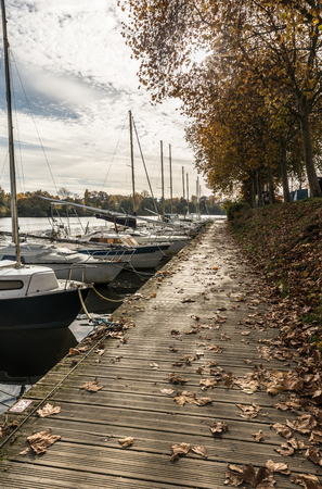 the loire: Pontoon on the Erdre river in autumn (Nantes, France)
