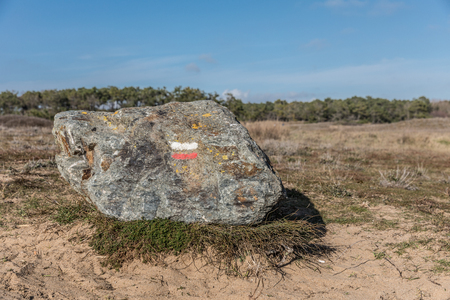europe: Hiking mark paint (Good direction) on rock in Bretignolles-sur-mer dunes
