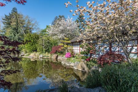 Japanese garden on Versailles island in Nantes, France