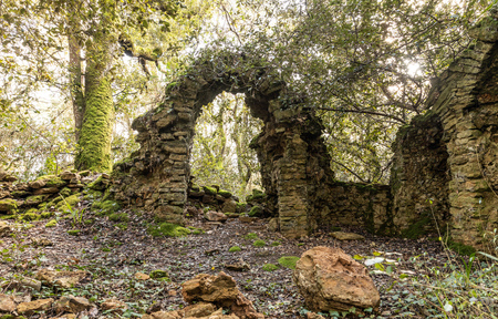 Ruins of an old chapel in the Veillon woods of Talmont Saint-Hilaire (Vendee, France)
