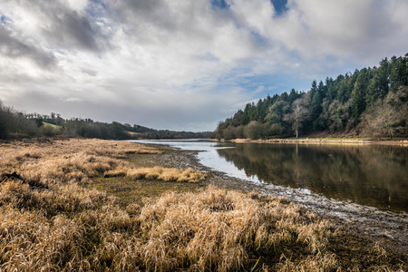 Landscape of the Jaunay lake dried up in winter (Vendee, France) Stock Photo