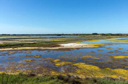 View of marshes in L'ÃŽle-d'Olonne during spring day