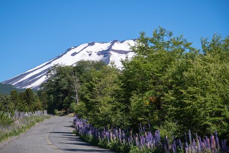 snowy peak of the volcano Lonquimay in Chile