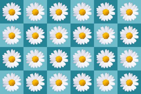 popart with twenty-four daisy blossoms on blue colored background, symmetric