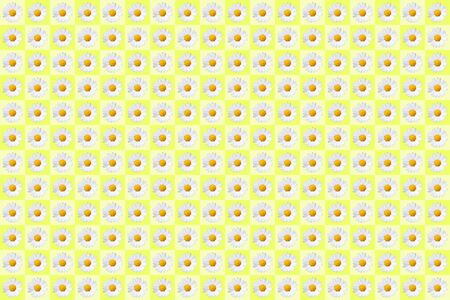 pattern with plenty daisy blossoms on yellow colored background, wallpaper