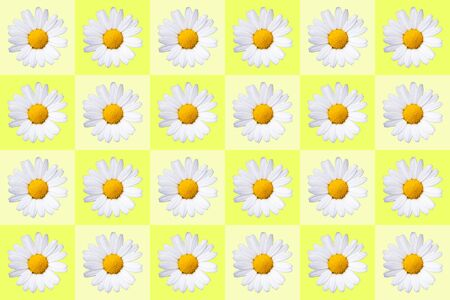 popart with twenty-four daisy blossoms on yellow colored background, symmetric