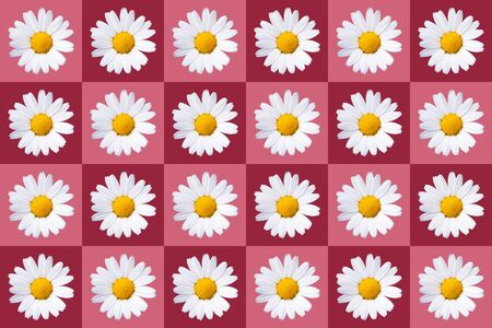 popart with twenty-four daisy blossoms on red colored background, symmetric