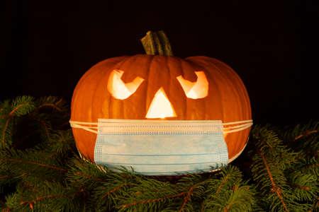 halloween pumpkin wearing a face mask, on fir branches. light illuminating the pumpkin from inside, black background 免版税图像