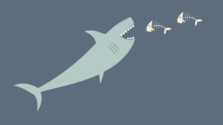 A deadly great white shark feasting on fish. Vector