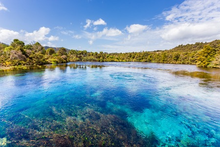 Pupu Springte waikoropupu springs in New Zealand Stock Photo