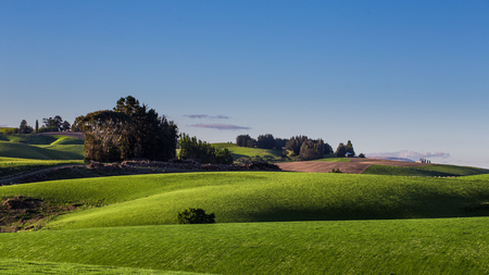 xp: Nature green hills with blue sky in New Zealand. Stock Photo