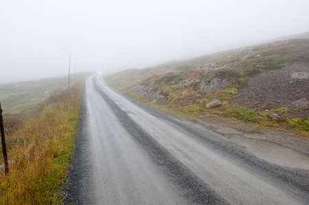 A country road through rural nature in foggy weather