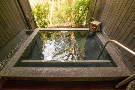 A traditional onsen in a Japanese forest