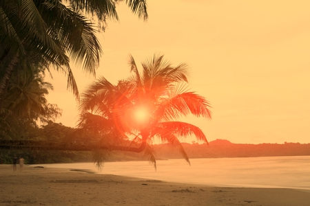 The splendor of the sun lies on the coconut trees in front of the beach. Stock Photo