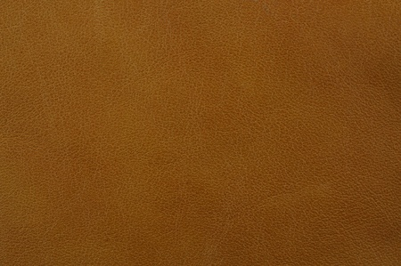 brown clothes: leather texture for background