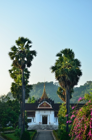 the temple in laos style photo