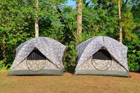 Camping Tents at Campground during Daytime in the woods photo