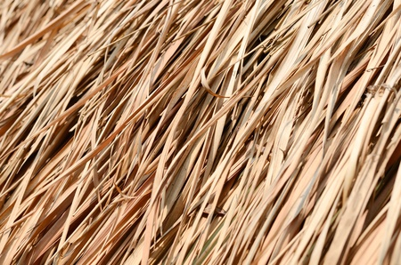 Closeup texture of thatch roof for background photo