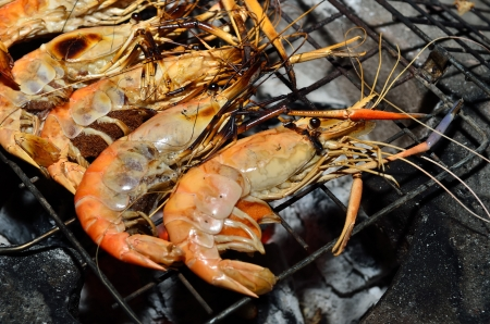 Delicious looking shrimp on the grill ready to eat photo