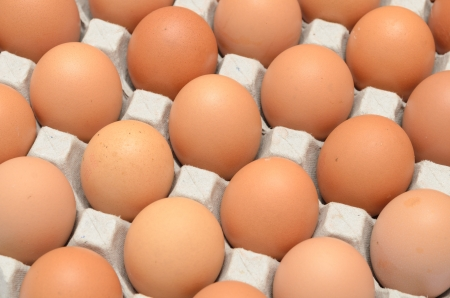 egg box: Eggs in a carton closeup view background Stock Photo