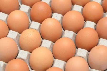 Eggs in a carton closeup view background Stock Photo