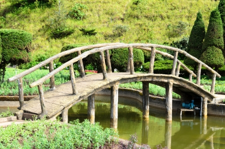 bridges: a beautiful side view of a peaceful little rock bridge and a path towards a forest