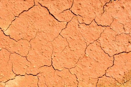 Dry cracked ground filling the frame as background Stock Photo