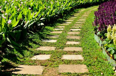 stone path: Garden stone path with grass growing up between the stones