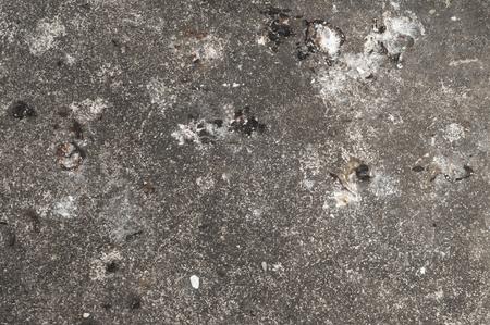 Bird droppings on cement floor. Stock Photo