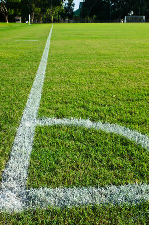 green grass and white line at soccer field Stock Photo - 28341135
