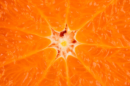 reticulata: closeup of an orange fruit for background