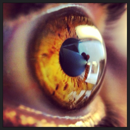 iphone5: Eye with olloclip macro and iPhone5 Stock Photo