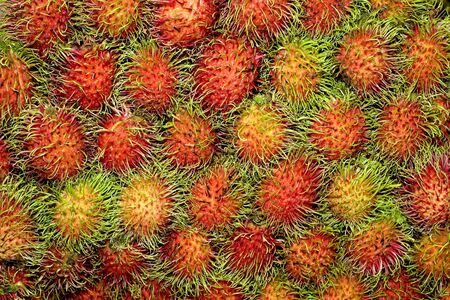Group of Rambutan Group Lay as Pattern  photo