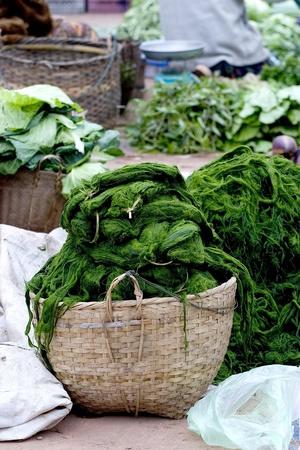 lao: Vert Spirogyra dans le panier � Lao march�
