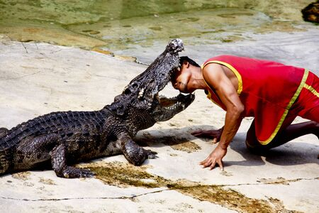 The Crocodile Show in Animal Farm,The Man fight against Crocodile one by one.