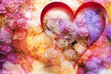 Blossom rose inside Red Heart  Background vivid color blossom rose  photo
