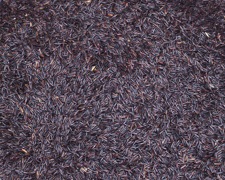 Black Rice the organic food in top view shot Thai rice from Thailand  photo