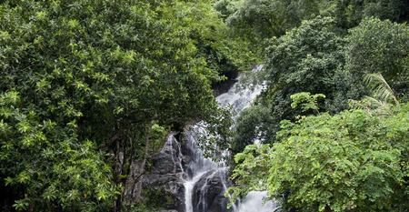 fountainhead: Stream of Waterfall lash down. Stock Photo