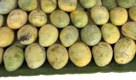 ripen: Ripen Mangoes lay on banana leaf in fruit market. Ripen Mangoess surface are yellow and light green. Delicious fruit from Thailand.