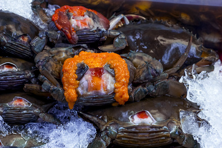 crap: Black Crab  and yolk or Egg crap  lay on ice in seafood supermarket. Stock Photo