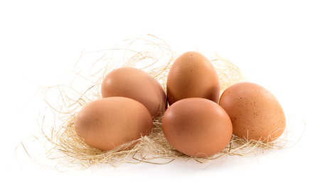chicken egg: Five fresh hen egg lay on straw.Little shadow on ground.White background.Not isolate.