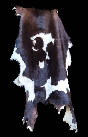 Cowhide rug with brown,black and white fur in close up shot.Black background. Stock Photo