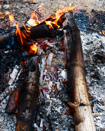 Close up bonfire from wood,black charcoal,ashes and flame by top view shot. Stock Photo