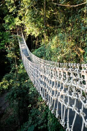 The suspension bridge in the jungle made from rope that excited and attraction for tourist. Standard-Bild